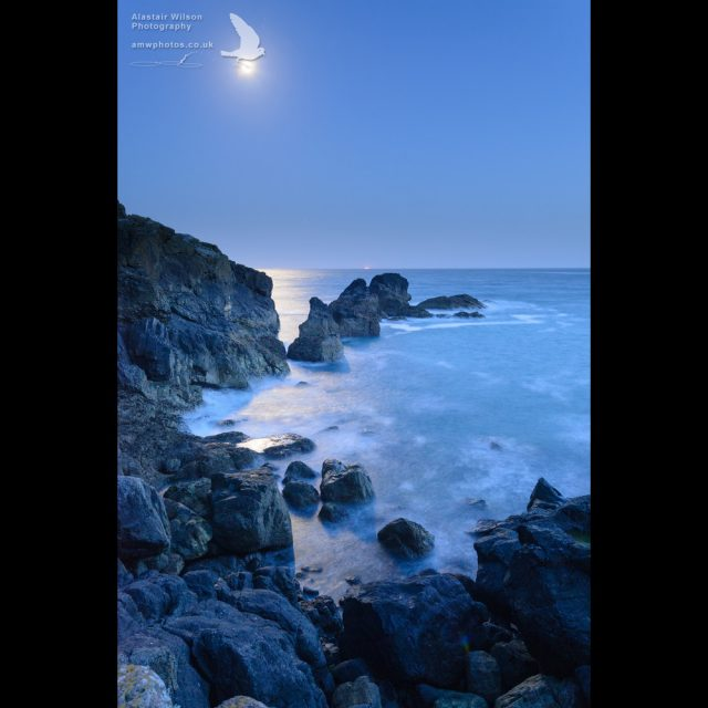 Moonlight ocean rocks